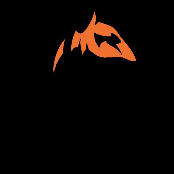 Online Tigers - Data pakket - 2